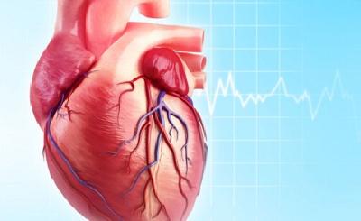 9 bệnh tim phổ biến ở người cao tuổi