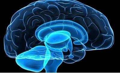 Những biểu hiện của lão hóa não