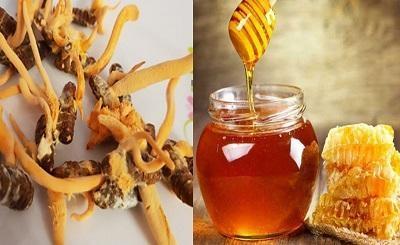 Những lợi ích và cách dùng đông trùng hạ thảo ngâm mật ong
