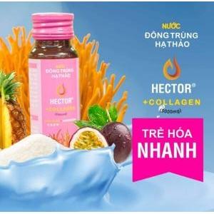 Nước đông trùng hạ thảo Hector collagen Hộp 10 lọ