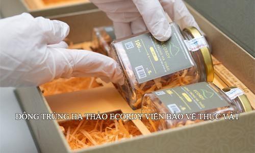 Đông trùng hạ thảo Ecordy Viện Bảo vệ thực vật được nhiều khách hàng lựa chọn